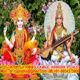 worlds no 1 best famous astrologer tantric